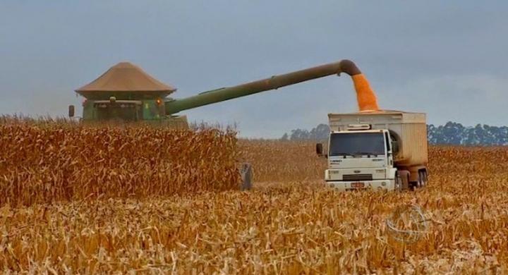 #Usina de etanol de milho deve gerar 1,5 mil empregos em MT