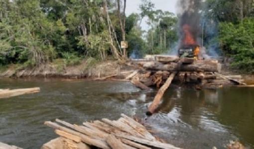 PF deflagra operação em combate a extração de madeira em terra indígena