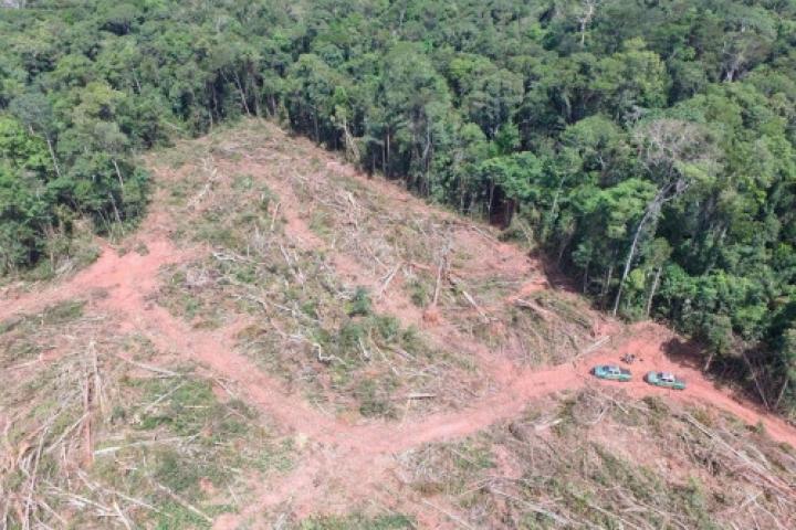 Justiça bloqueia R$ 29 mi de fazendeiro que desmatou 1,2 mil hectares em Juara