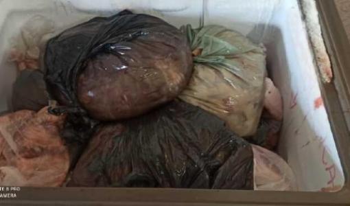 Vigilância apreende 160 quilos de carne vendida de forma irregular em Juína
