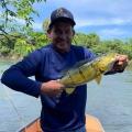 Bombeiros encontram corpo de empresário Ary Linhares desaparecido no Rio Aripuanã