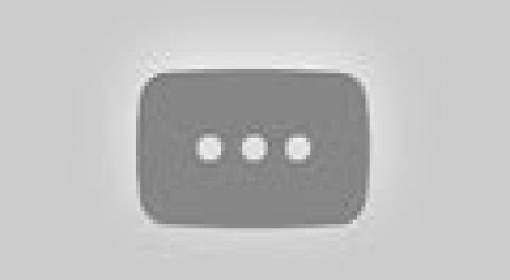 12 animais raros que é difícil acreditar que eles são reais